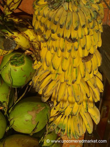 Bananas and Coconuts - Melaka, Malaysia