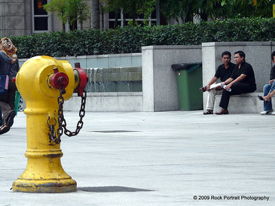 Fire hydrant for very big dogs
