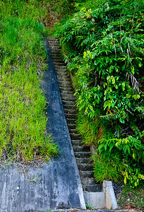 Cameron Highlands - watercourse