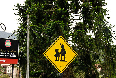 Cameron Highlands - school crossing