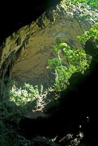 Looking in Deer Cave at Mulu National Park - Sarawak, Malaysia