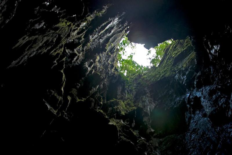 Skylight peeking through the Wind Cave in Mulu National Park - Sarawak, Malaysia