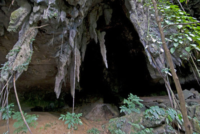 Entrance to a runner cave in Mulu National Park - Sarawak, Malaysia