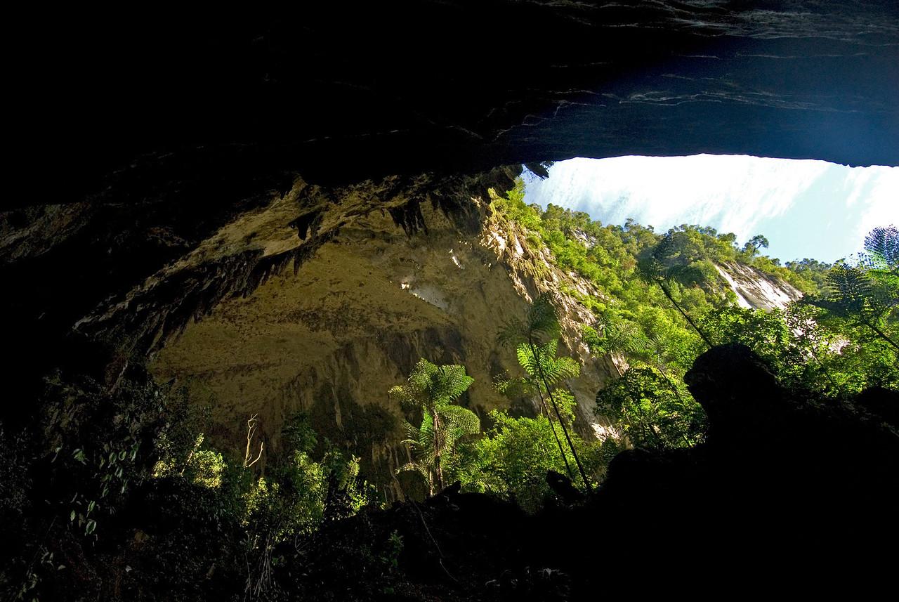 Panoramic view of the Deer Cave entrance at Mulu National Park - Sarawak Malaysia