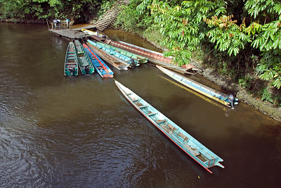 Long boats stationed at a dock in Mulu National Park - Sarawak, Malaysia