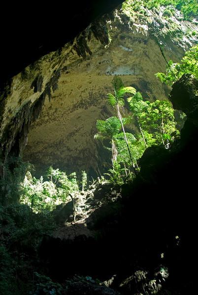 Shot of the Deer Cave entrance at the Mulu National Park - Sarawak Malaysia
