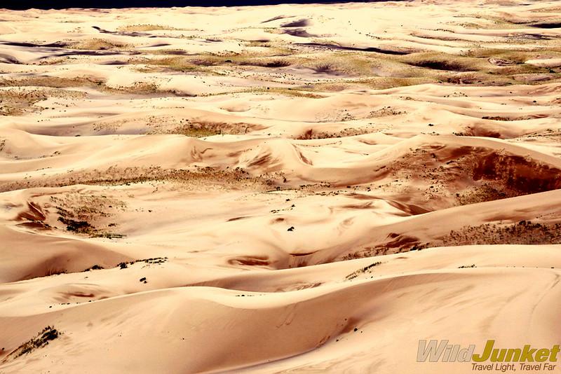 The sand dunes of Khongoriin Els