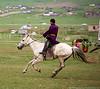 Mid-gallop - Naadam Festival