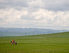 Across the Modern Steppe