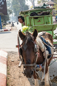 Horse carts are a quaint form of transport in the old colonial hill town of Pegu