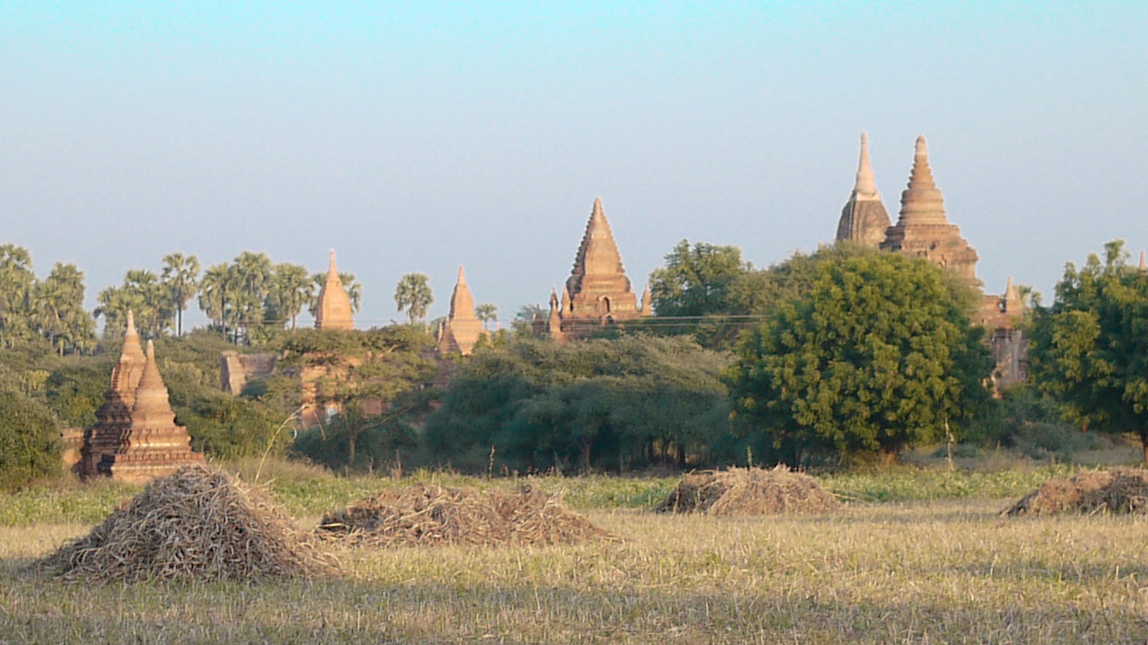 An endless sea of temples in Bagan, Burma (Myanmar)