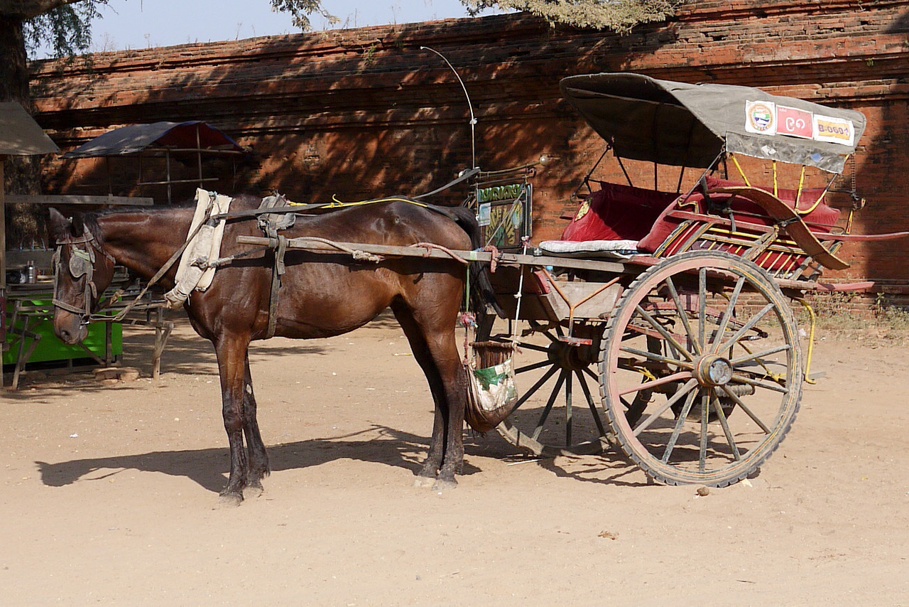 A horse car in Bagan, Burma (Myanmar)