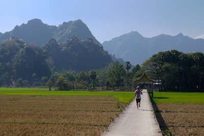 Karst rocks and a rural bridge through the rice paddies outside of Hpa-An, Burma.