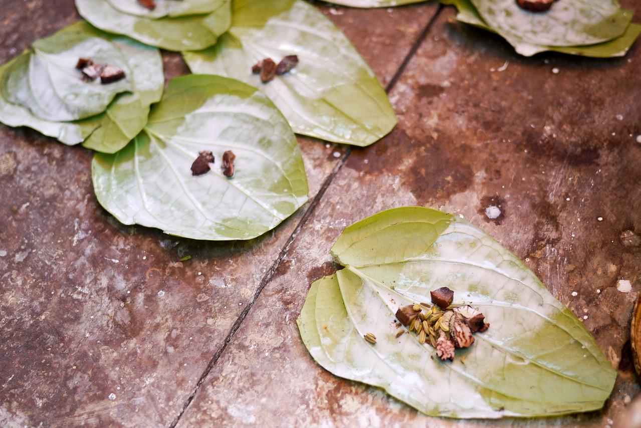 Betel nut leaves from Inle Lake, Burma (Myanmar).