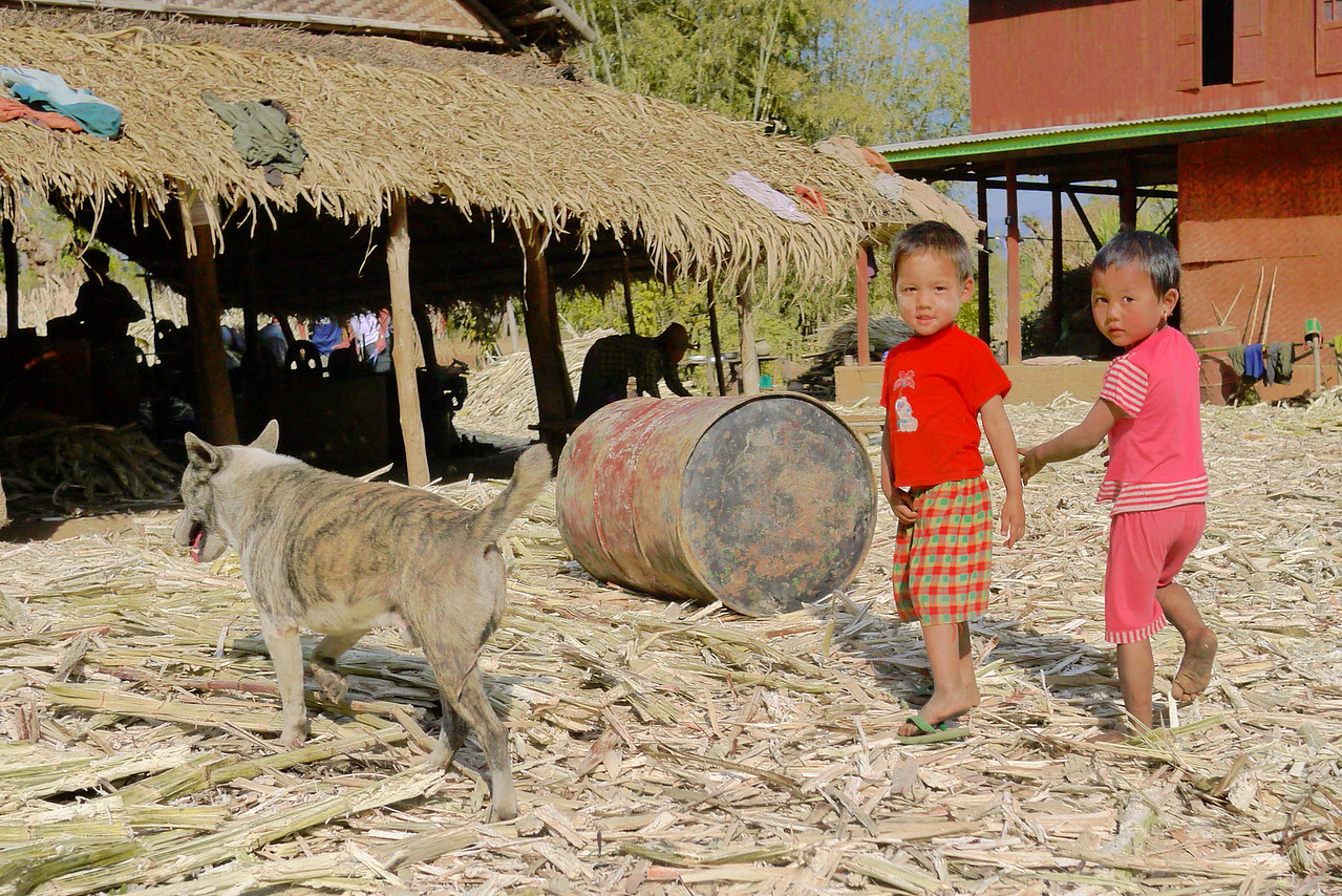 The children lead us into the candy workshop where their parents process jaggery sugarcane candies, Inle Lake, Burma (Myanmar).