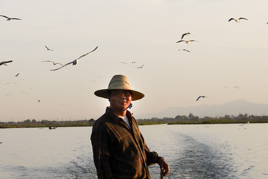Our boat driver and a flock of seagulls tailing the boat on Inle Lake, Burma (Myanmar).