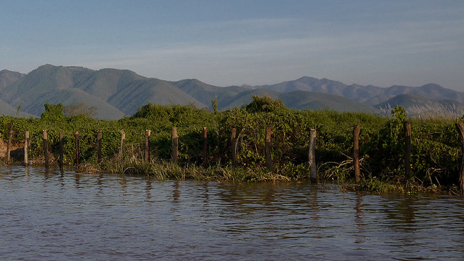floating tomato gardens, inle