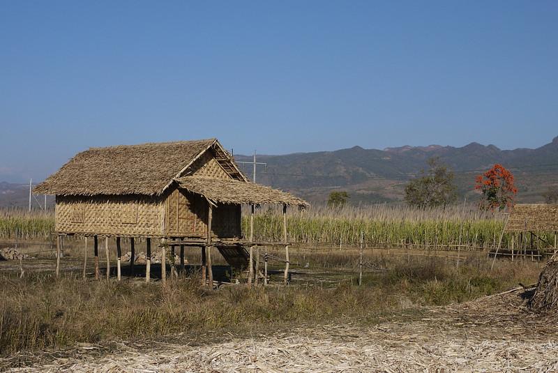 Woven houses near Nyaung Shwe on Inle Lake, Burma (Myanmar).
