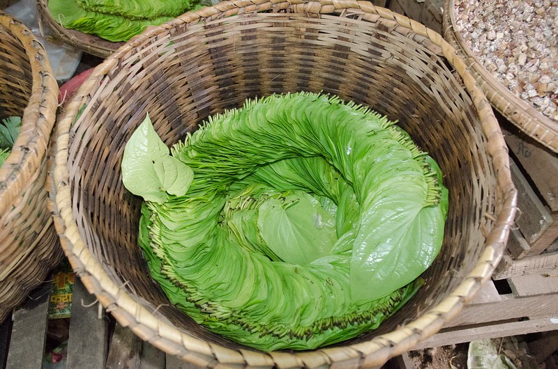 Betel nut leaves.