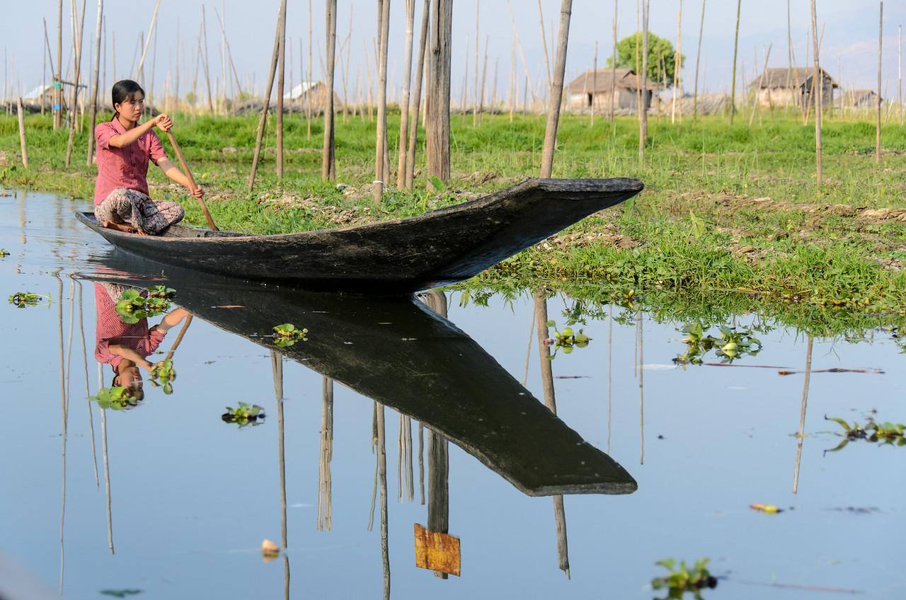 Girl rowing traditonal boat past floating gardens.