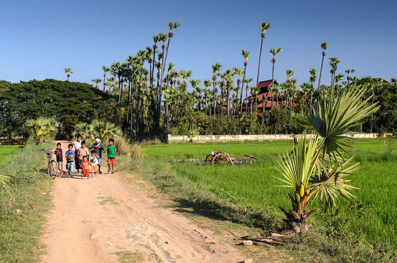 Children walking on the road through the rice paddys at the Bagaya Monastery.