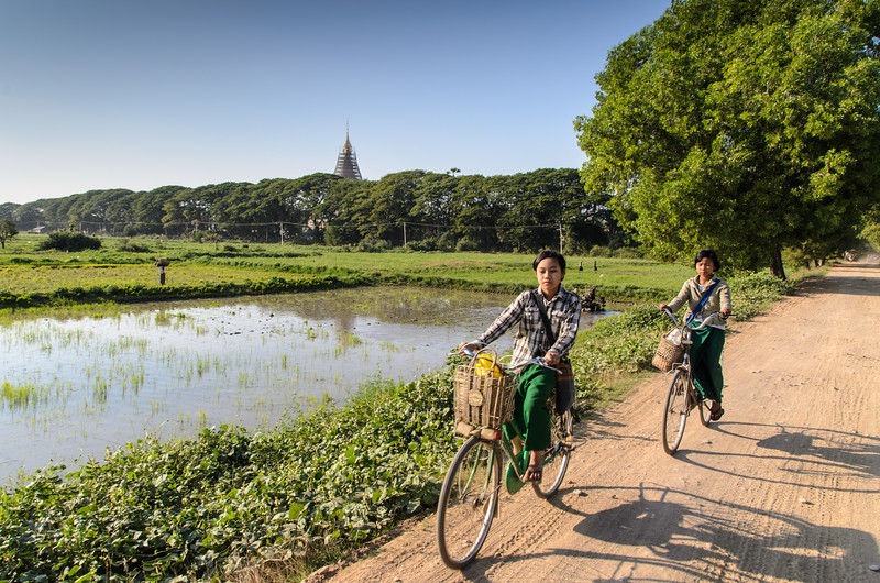 School girls on bikes passing rice paddys, Inwa, Myanmar.