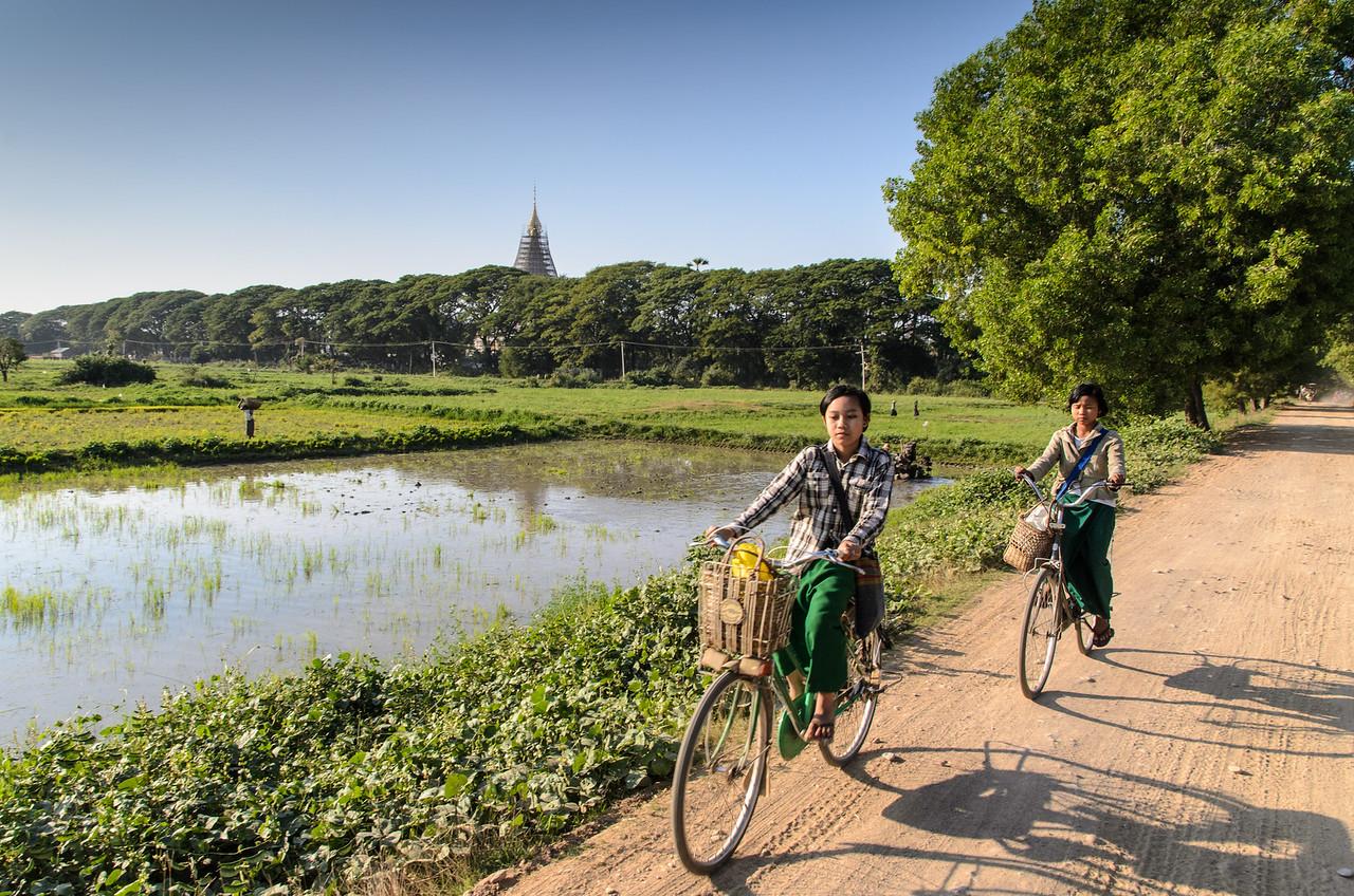 School girls on bikes passing rice paddys, Inwa, Myanmar.