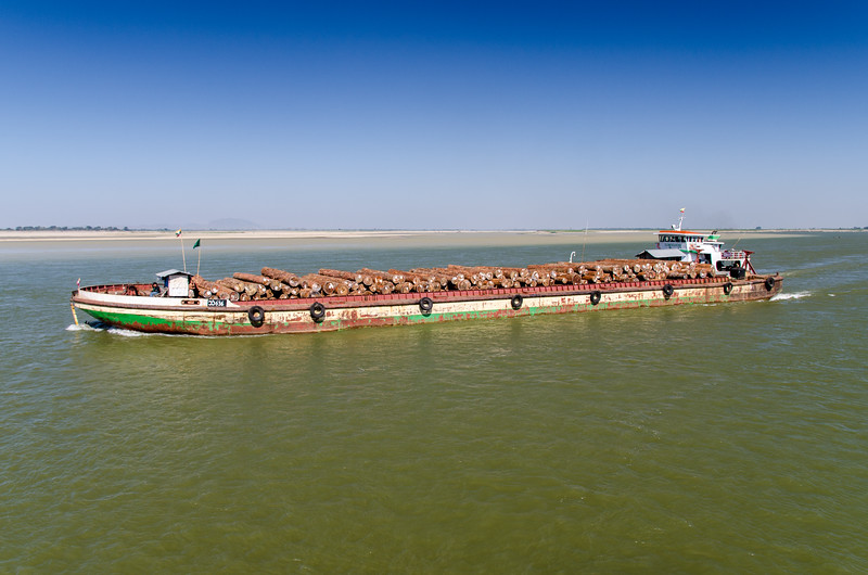 A barge loaded with teak logs.