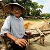 Ox cart driver