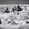 Bagan pagodas 4