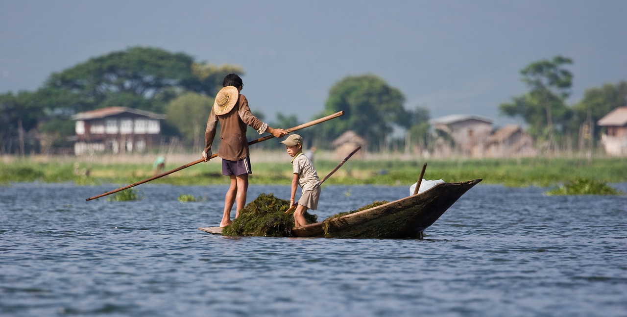 I never did find out authoritatively what the locals use the 'lake weed' from the bottom of the shallow lake for, but you saw quite a few folks scooping it into their boats.<br /> <br /> Location: Inle Lake, Myanmar<br /> <br /> Lens used: 100-400mm f4.5-5.6 IS