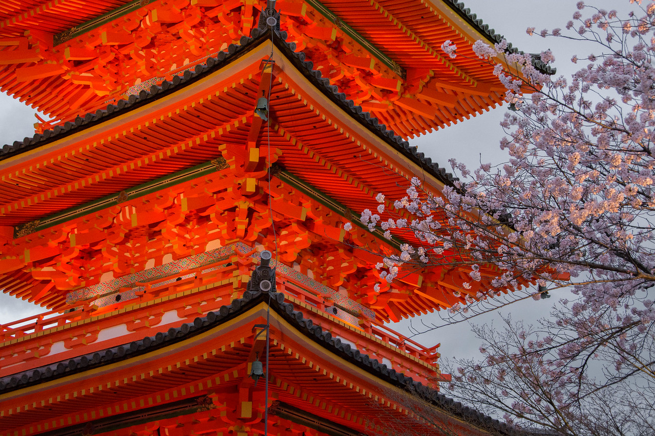 Blossoming Temple