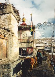 Jharkot