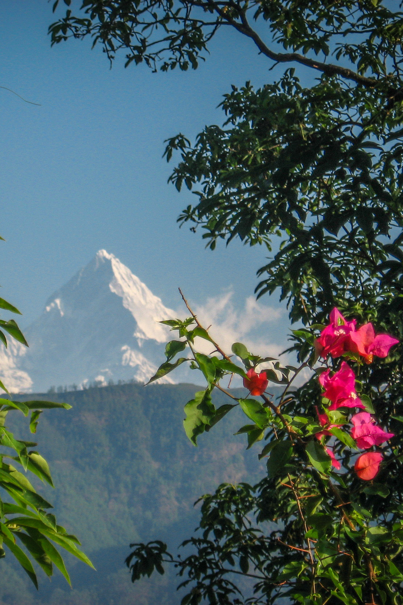 Machapuchare from Begnas Lake in Nepal