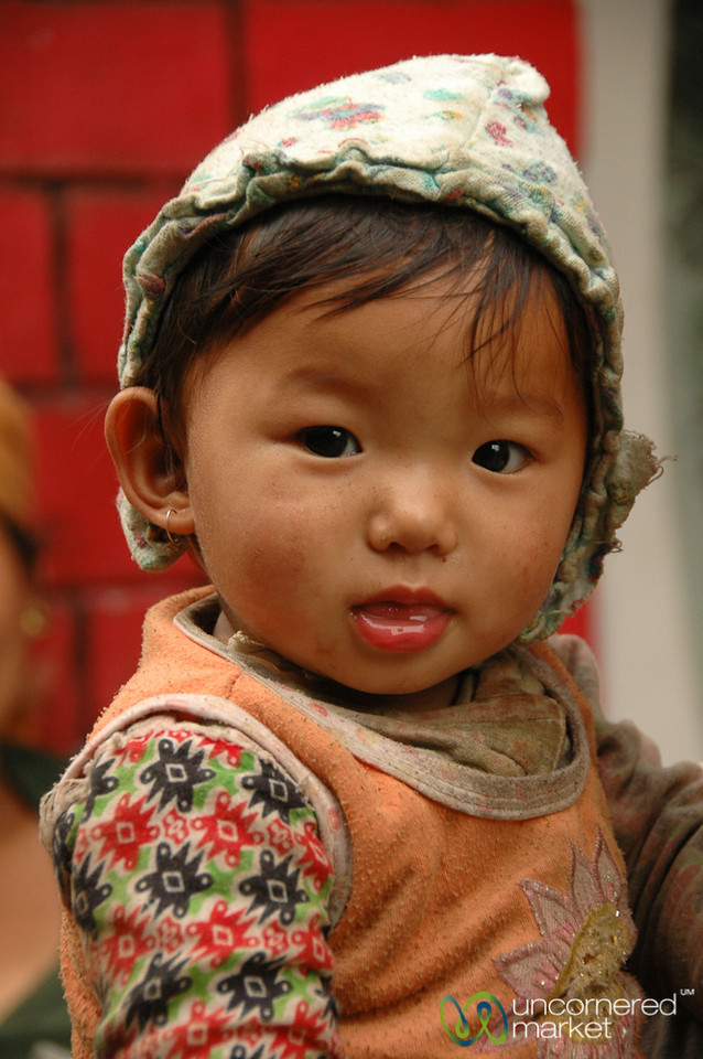Adorable Young One - Annapurna Circuit in Nepal