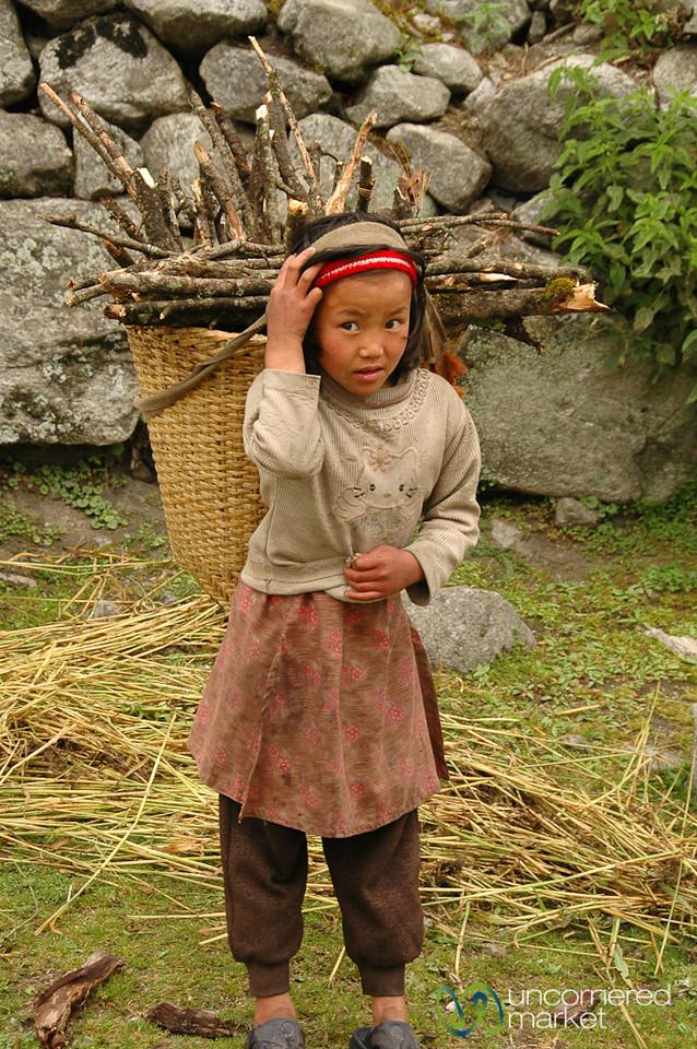 Heavy Load of Wood - Annapurna Circuit, Nepal