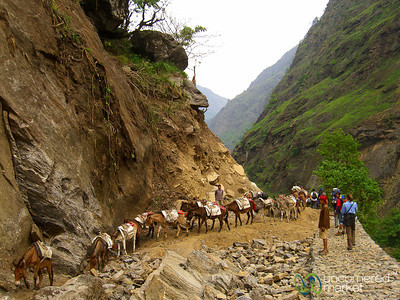 Walking a Washed Out Road - Annapurna Circuit, Nepal