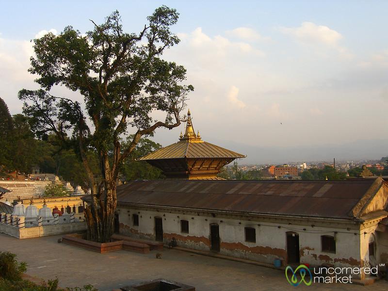 Pashupatinath Temple - Kathmandu, Nepal