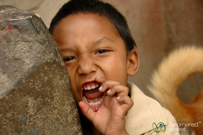 Animal Tedencies? Kathmandu, Nepal