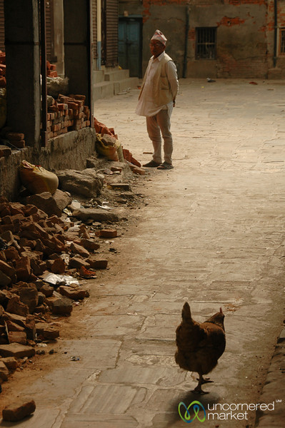 Why Did the Chicken Walk Down the Alley? Kathmandu, Nepal