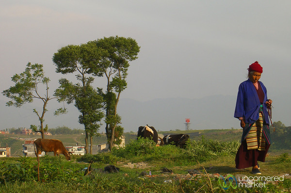Walk Through the Fields - Kathmandu, Nepal