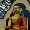 Swayabunath