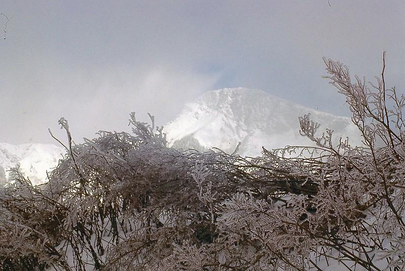 Mt. Hohwanshan