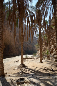 The entrance to Wadi Shab...