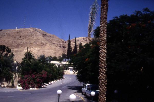Jeg vil påstå at dette er fra Jericho på dagens Vestredd. Men noe sier meg at jeg tar feil. Uansett, vi befinner oss et sted i Jordan-dalen. (Foto: Geir)