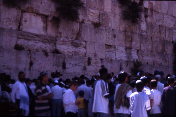 Noen sier at Klagemuren forteller mye om jødenes tragiske historie. Andre at det sier noe om jødenes mentale psyke. Den jødiske tilnærmelsen til livet er klagens, i følge forfatteren Paul Theroux. Det var ikke min erfaring, men jeg kom aldri i samtale med den del av befolkningen som brukte tiden sin foran murene. Her ungdommer som holder på med sin Bar Mitzwa. (tror jeg) (Foto: Geir)