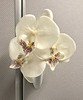 orchid in the lavatory (Singapore Airlines)