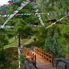 Crossing the bridge to our villa
