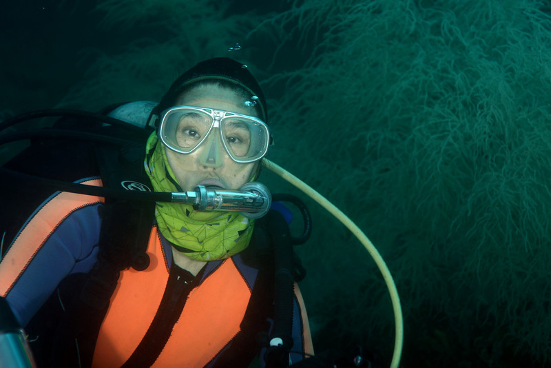 Zung, aka Ms. Cucaracha, at 60fsw, among forest of black coral.<br /> Red Palm dive site, Anilao, Philippines.