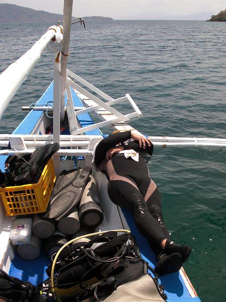 Boy Venus, horizontal during surface interval<br /> Anilao, Philippines